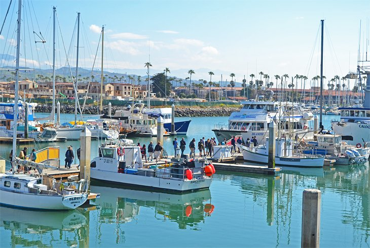 things to do in ventura